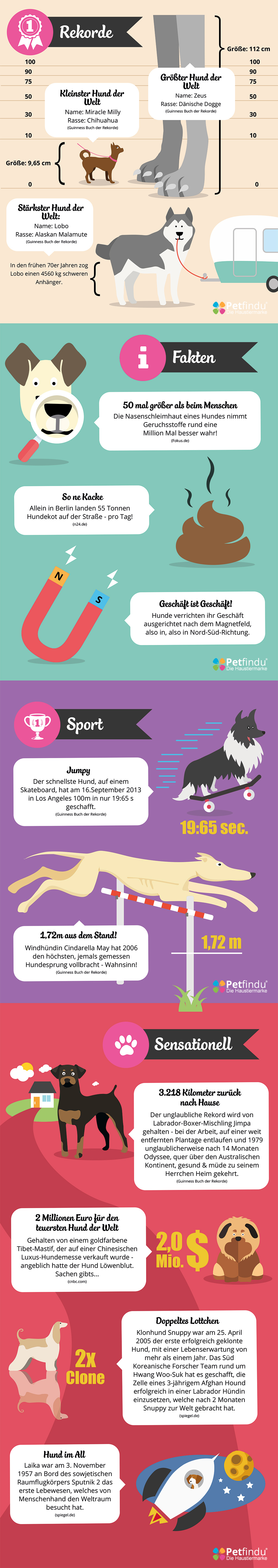 infograph hunde