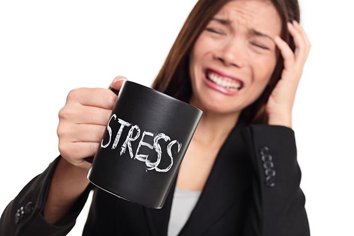 Kollege Vierbeiner: Hunde im Büro senken den Stresslevel